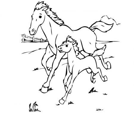 Disegno cavallo da colorare disegni animali da colorare for Immagini di cavalli da colorare