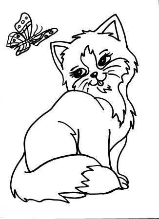 Disegno Gattino Da Colorare Disegni Animali Da Colorare